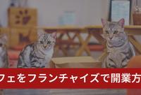 猫カフェをフランチャイズで開業するには?費用や注意点、準備などまとめ